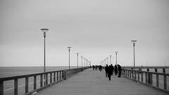 (Stereovisionblog) Tags: bridge people blackandwhite white snow cold ice alone lithuania