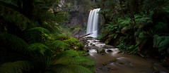 Hopetoun Falls (Trace Connolly) Tags: australia australian canon7d canon environmentalphotography ferns greatoceanroad landscape longexposure naturephotography nature nationalpark otwayrangesnationalpark otwayranges tree trees water waterfalls falls green day wow holiday rocks colours leaf leafy hiking vacation flickr national