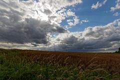 20160702_Plateau_Saclay_008 (la.truf) Tags: cloud saclay 1020sigma canon7dii