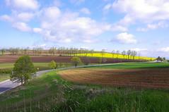Colours of the road (Baubec Izzet) Tags: flickrunitedaward