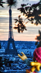 24/07/2016 day 336 : sunset over the Eiffel Tower (shaye.photo@yahoo.fr) Tags: ifttt 500px travel city outdoors architecture tourism building tower no person sky sunset urban tourist eiffel figurine miss meteo project365 365days 365photos iphone iphone6s iphonephoto shotoniphone sunny missmeteo