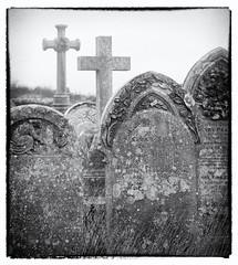 RIP Flickr....? (Carolbreeze99) Tags: dorset portland graveyard cemetary graves death delapidation rip flickr silverfx landscape gravestone foggy fog mist atmosphere