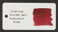 Diamine Flower Set Burgundy Rose - Word Card