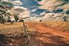 Stock Routes 1 (Struan Timms Photography) Tags: clouds landscape fences riverina tokina1116mm28 nikond7000 nikhdreffex nikcollection struantimmsphotography juneephotographer narranderashire