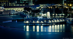 The Merlion with long exposure (gunman47) Tags: blue light urban 30 night river landscape photography singapore asia long exposure downtown tripod trails tourist tourists trail hour second sec sg merlion seconds attraction packed crowded bumboat the 2015