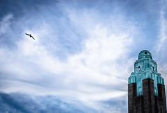 Flying Away (themozzarella) Tags: sky bird tower clock finland spring cool helsinki nikon warm deep bluesky highlights trainstation dslr epic birdflying nikond60