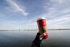 Red Christmas Starbucks cup and the Ft Sumter Ferr (m01229) Tags: unitedstates mountpleasant southcarolina 2014 d7000 december2014