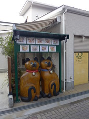 (MRSY) Tags: japan cat object  nara oversized      yamatotakada