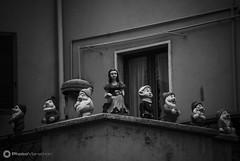Garnerone_Daniele_02