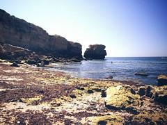 algarve (Portugal) (gloriafuentesber) Tags: costa portugal mar playa turismo roca acantilado relieve ocanoatlntico erosin orografa elalgarve hidrologa geografafsica