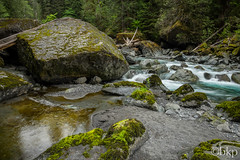 Staircase rapids (bkp141991) Tags: water forest washington rocks northwest rapids pacificnorthwest washingtonstate olympicnationalpark pnw olympicnationalforest staircaserapids fujinonxf14mmf28 upperleftusa fujifilmxt1 cushmanstaircase