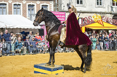 Feria de Jodoigne (NosChevaux.com) Tags: horses horse cheval feria andalucia chevaux paard paarden spectacle jodoigne spectaclequestre noschevaux noschevauxcom