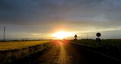 IMG_0007x (gzammarchi) Tags: strada italia tramonto nuvola natura campagna sole paesaggio ravenna pianura villanovadiravenna