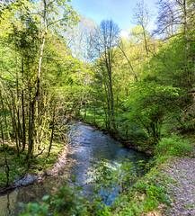 L'Arros (Collabois) Tags: nikon cairn chemin mousse pyrnes fes fougres d600 randonnes baronnies dryades gourguedasque
