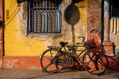 Puducherry (chamorojas) Tags: india bicycle pondicherry 60d puducherry albertorojas chamorojas