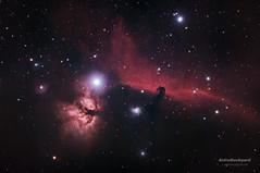Barnard 33 - Horsehead Nebula (AstroBackyard) Tags: sky horse cloud black tree mystery night star photo amazing colorful space telescope nebula orion astronomy supernova universe flaming cosmos horsehead astrology constellation celestial nebulae
