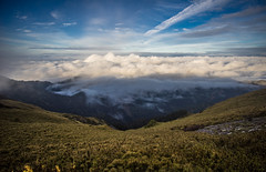 -15 (billlushana1) Tags: travel cloud mountain flower tree sony taiwan hike peaks  taroko tw  tarokonationalpark hehuanshan    mountain 100peaksoftaiwan taiwantop100peaks sonya7r