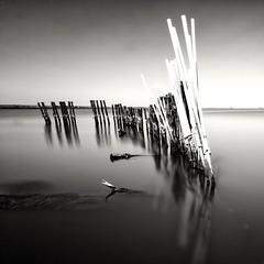 Laguna, Art e Riflessi (Minieri Nicola) Tags: lake art landscape longexposition blackewhite
