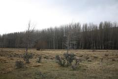 Mesopotamia (ambodavenz) Tags: new two station landscape high country scenic reserve conservation canterbury zealand thumb te range mesopotamia kahui kaupeka