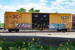 (o texano) Tags: bench graffiti texas houston trains optimist freights benching