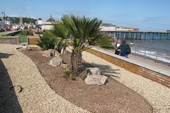 IMG_1943site3 (janohighway) Tags: summer sculpture art design seaside community selection environment choice recycling collective debate teignmouth outdoorart ecoart sculpturetrail devonuk womenartists trail2016