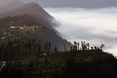 Before Sunrise in Cemoro Lawang (eggysayoga) Tags: city cliff cloud film ex fog forest landscape java soft mood moody village sigma os east foliage filter 09 lee nd fujifilm fade gunung awan jawa timur bromo bukit graduated tengger 70200mm cemoro emulation desa gnd lawang xt1 kabut cemorolawang vsco