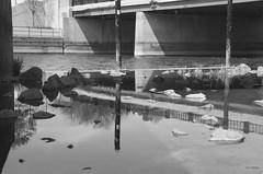 (pop archaeologist) Tags: city bridge blackandwhite film water canon concrete downtown kodak michigan flint citypark tmax100 flintriver expiredfilm 28105 riverbankpark standingwater flowingwater eosa2