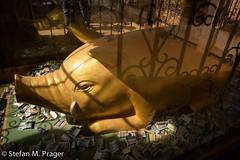 722-Mya-KAKKU-034.jpg (stefan m. prager) Tags: gold burma buddhism myanmar shan birma schwein schweine sehenswrdigkeit kakku buddhismus nikond810 pagodenfeldkakku