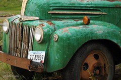 Green Ford Truck (VenturaMermaid) Tags: old green classic ford vintage antique rusty fender vehicle fordtruck