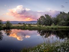 Thank's (Seth GaleWyrick) Tags: olympus omd em5 1240f28 landscape montana pond water lakesunset pink clouds reflection rural victor bitterroot