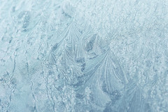 Winter in Australia (Patricia Woods) Tags: winter cold ice frost freezing frosty kingaroy