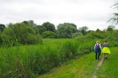 Feuchtland // Wet Lands (frankbehrens) Tags: schaalsee mecklenburg biospherereserve biosphrenreservat