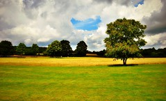 Godmersham, Kent, England (Paul Anthony Moore) Tags: godmersham kent england