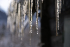 Icicles (natural illusions) Tags: winter december icicles frozentears ice outdoor slovenia europe rural pentax k200d gimp imagemagick naturalcolors nature bokeh closeup dof depthoffield sunlight cool lb1415 allrightsreserved