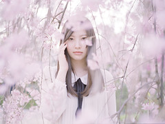 Untitled138 (soda ritsuko) Tags: pink portrait girl japan model hiroshima 桜 cherryblossom ポートレート 広島 女の子
