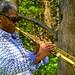 Soprano Sax...in the park