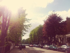 Beautiful sun beautiful day beautiful view capture the good and beautiful moments in life  #quote #beauty #beautiful #life #amazing #walking #thoughts #London #UK #summer #spring #tree #love #colour #idea #thoughts #deep #fresh #bus #car #air #blue #sky # (fahimahmed507) Tags: life uk blue summer sky colour bus tree london love beautiful beauty car walking idea spring amazing day quote air deep sunny fresh clear thoughts