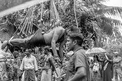 Tamil-SW-002 (gbauer211) Tags: srilanka prozession rituale hinduismus schmerzen tamilen