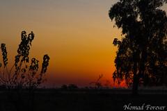 Twilight (nomad forever) Tags: twilight crepúsculo gouin carmendeareco