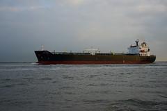 Pink Coral (DST_6606) (larry_antwerp) Tags: netherlands ship nederland vessel schelde tanker  schip  rilland     pinkcoral            9259898
