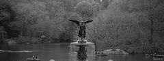 Un Ange, les pieds dans l'eau (bbferrand) Tags: voyage blackandwhite usa newyork angel 50mm noiretblanc centralpark ange explore fontaine printemps bethesdafountain bethesdaterrace madameb canon60d printemps2016 avril2016