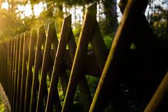 Fenced Friday (Conrad-N) Tags: fence friday
