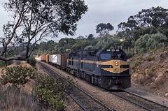 C509/C506 at Lynton (Bingley Hall) Tags: railroad train diesel transport engine rail railway australia transportation locomotive southaustralia freight lynton c509 vline victorianrailways 645e clydeengineering rpauviccclass rpauviccclassc509 railpage:loco=c509 railpage:livery=1 railpage:class=21