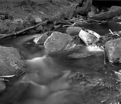 Moving Water (KevinCollins00) Tags: blackandwhite bw ontario canada film mediumformat pond fuji pentax beaver 120film trail neopan 6x7 analogphotography algonquinpark acros100 filmphotography pentax6x7 provincialparks ontarioparks nipissingunorganizedsouthpart nipissingunorganizedsouthpa