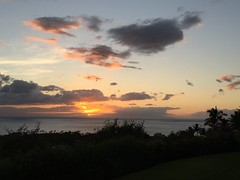 IMG_0413 (Ourisman Travel) Tags: hawaii maui wailea hotelwailea