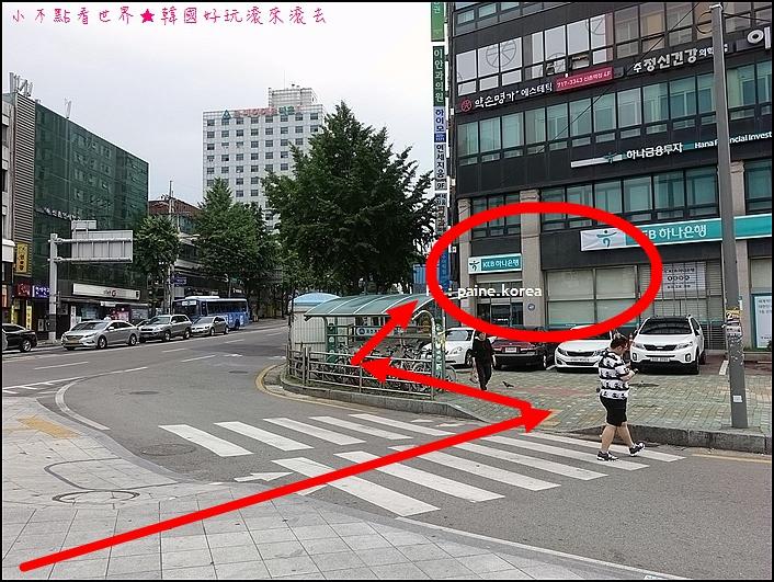 新村Peter Cat Hotel (30).JPG