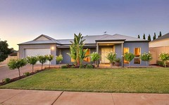 23 Drings Way, Gol Gol NSW