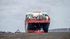 UASC SAJIR - 20150413-SNE_1849 (Sascha Neuroth) Tags: harbor hamburg vessel container tug hafen schiff elbe schiffe schlepper containerschiff frachter uasc sajir zpbulldog