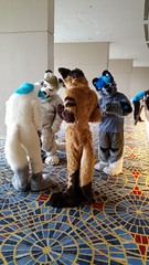 Dream Machine Photoshoot FWA 2015 - Shots by Lykanos (8) (Lykanos) Tags: furry photoshoot dreammachine fwa fwa2015 dmcostumes