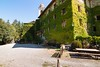 Frosini, Toscana (Celso Kuwajima) Tags: italy canon eos ivy it tokina 7d toscana hdr itália hera fujiastia100f frosini 1116mmf28 caminhoparamontalcino